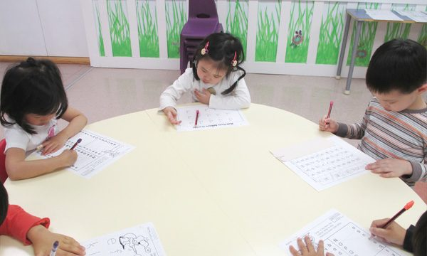 Students studying academic subjects