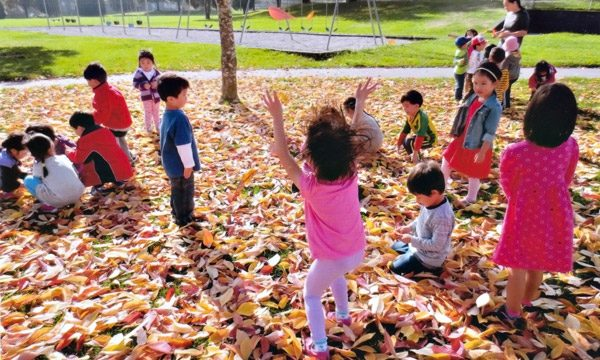 Brainbridge preschool students playing with fall leaves.