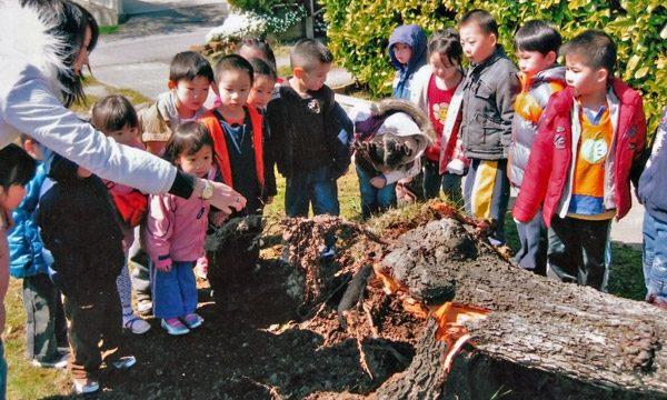 Brainbridge preschool students outdoor activities